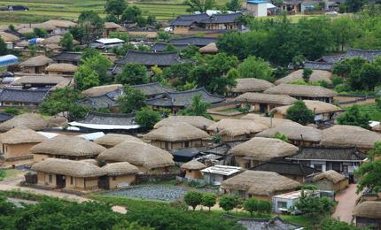 河回村の画像 p1_13
