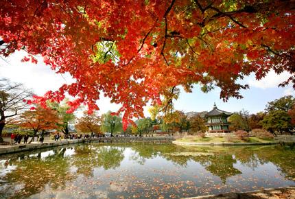 韓國景福宮